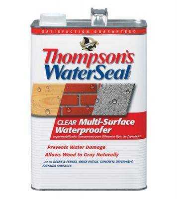 THOMPSONS WATERSEAL Clear Multi-Purpose Waterproofer